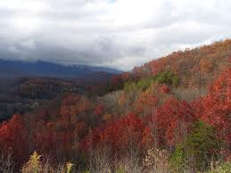 Foliage Map Fall Foliage Map Shows When Leaves Will Reach Peak Simplemost