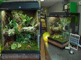 25 best vivariums and terrariums images on pinterest terrariums