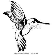 hummingbird silhouette isolated vector stock vector 268901057