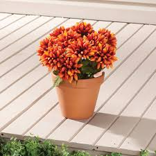 Faux Outdoor Bushes Artificial Mums Plastic Mums Plastic Flowers Miles Kimball