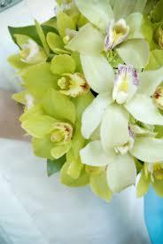 louisville florists nanz kraft wedding louisville ky weddings events