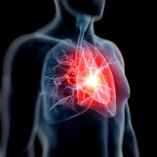 the size of this body part predicts whether you u0027ll survive a heart