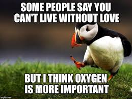 Puffin Meme - unpopular opinion puffin meme imgflip