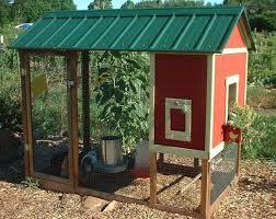 Building Backyard Chicken Coop Easy To Build Backyard Chicken Coop With Simple Automatic Chicken