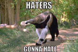 Anteater Meme - index of wp content gallery haters gonna hate