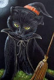 halloween cats wallpaper 4996 best cats halloween community board images on pinterest