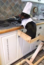 bon appetit kitchen collection 201 best cooking w chefs images on pinterest kitchen bon