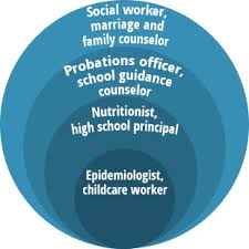 What Does Career Field Mean On A Resume Human Services Careers Publichealth Org