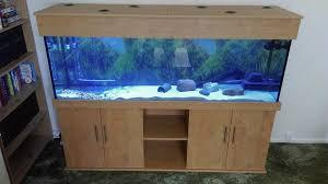 tropical aquarium 72x24x18 in oak colour from prime aquariums