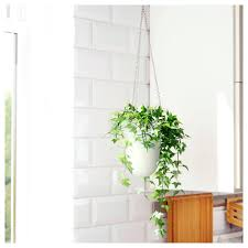 wall mounted planters articles with wall hanging planters india tag wall hanging