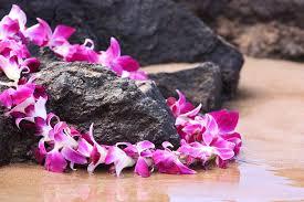 hawaiian leis guest wedding s hawaii wedding ceremony married with