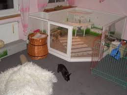 Diy Indoor Rabbit Hutch 63 Best Pets Images On Pinterest Angora Rabbit Bunny Home And