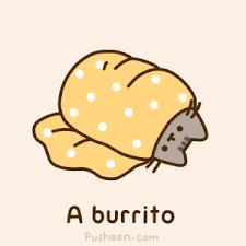 Burrito Meme - pusheen burrito random pinterest pusheen pusheen cat and