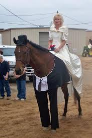 Halloween Costumes Bride Groom Horse Halloween Costumes Brilliantly Funny U2026you