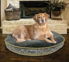 costco pet beds costco dog beds dog bed custom signature x bolster kirkland dog