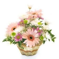local florists 12 best flowers to bulgaria by local florists images on