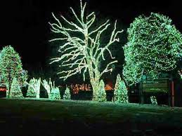 when does the lights at the toledo zoo start toledo zoo lights before christmas youtube