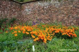 Simple Flower Garden Ideas Flower Garden Ideas Design Tips For Edible Flower Gardening