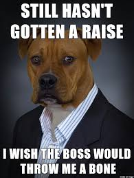 Dog Lawyer Meme - give me a raise meme me best of the funny meme