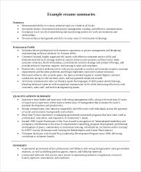 Resume Summary Paragraph Examples by Executive Summary Resume Executive Summary Resume Example Resume