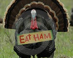 where to buy your thanksgiving turkey orange county register