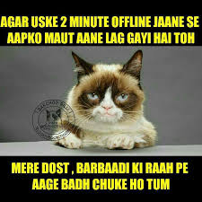 Mere Cat Meme - bakchod billi l lagne wale hai aapke bakchodbilli pk facebook