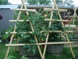 How To Grow Cucumbers On A Trellis Gardening On A Trellis Mom Prepares