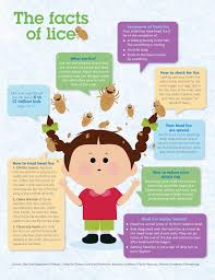 thanksgiving health articles the facts of lice