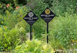 native plants in massachusetts native plant habitat certification gnps