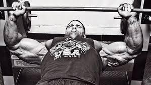 Bench Press Hypertrophy Muscle Palace Muscle Mass Workout Plan