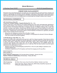 Credit Risk Business Analyst Resume Cool Credit Analyst Resume Example From Professional