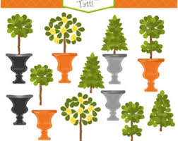 Outdoor Topiary Trees Wholesale - topiary tree etsy