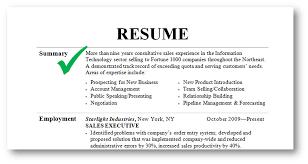 executive summary resume example template example professional summary for resume summary on a resume skills summary resume examples professional summary resume