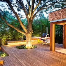 Trees Backyard Backyard Tree Lighting Ideas That Will Fascinate You