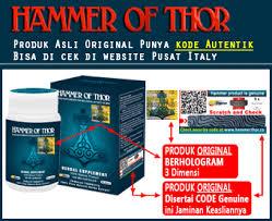 macam hammer of thor beredar hammer of thor s