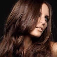top selling hair dye best 25 chocolate brown hair color ideas on pinterest chocolate