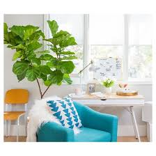 Turquoise Accent Chair Lumisource Rockwell Accent Chair Teal Target