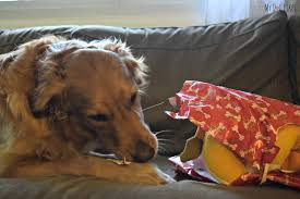 pet printz safe wrapping paper review