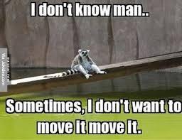 I Don T Know Man Meme - i dont know man meme