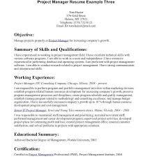 resume summary exles marketing resume summary exles unique resume greatry statements and good