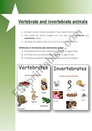 free printable worksheets vertebrates invertebrates english worksheets vertebrate invertebrate animals