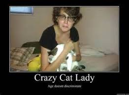 Crazy Cat Lady Memes - crazy cat lady meme crazy cat meme tridanim