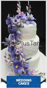cakes plus tampa u2013 the fine art of cake decorating