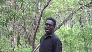 gerald yawulkpuy special tree guymululu