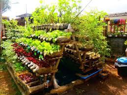 Veggie Garden Design Ideas Vegetable Garden Container Ideas Container Gardening Vegetables