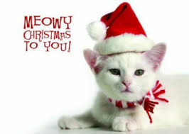 meowy christmas a meowy christmas 2017 ruthless reviews