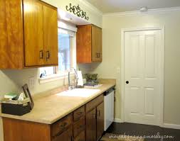 Examples Of Painted Kitchen Cabinets Exellent Olive Green Painted Kitchen Cabinets This But Would Never