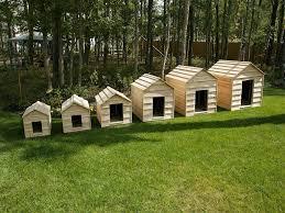 house kit build a dog house kit