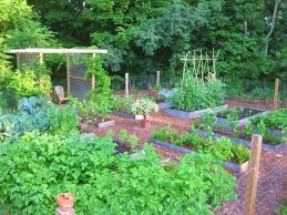 Raised Herb Garden Ideas Raised Herb Garden Ideas Contemporary Landscaping Ideas