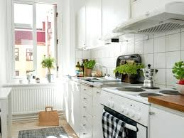 Small Kitchen Design Tips Diy Best Images Small U Shaped Kitchens Ideas Awesome Ideas Of